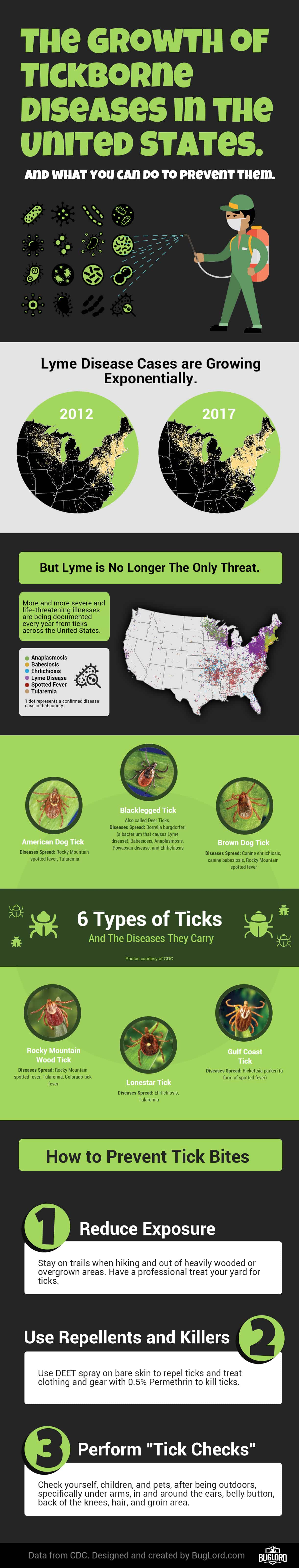 Types of ticks infographic