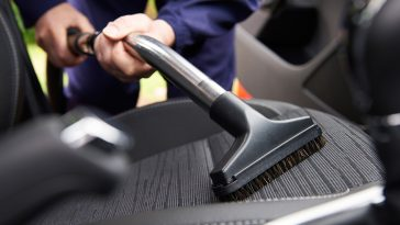 get rid of bed bugs in car