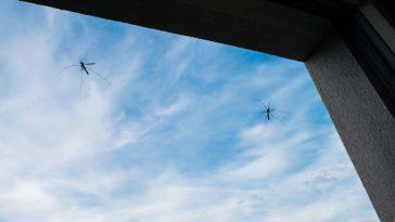 indoor mosquito repellent